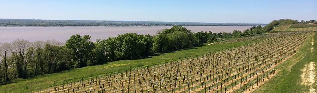 Haute_Gironde-058-slider
